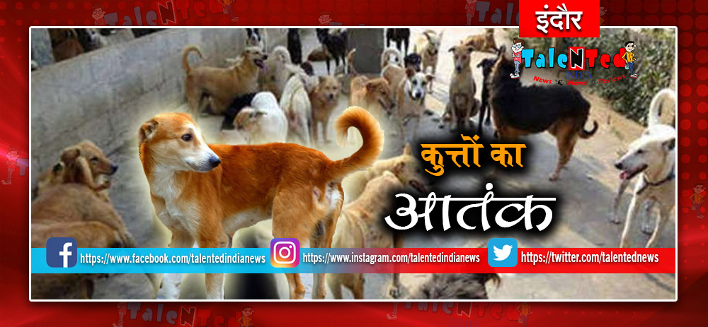 Indore Cricme News In Hindi : Dogs Attack On Police In Indore