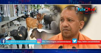 Yogi Government Has Heard The Order To Put All Animals In Jail