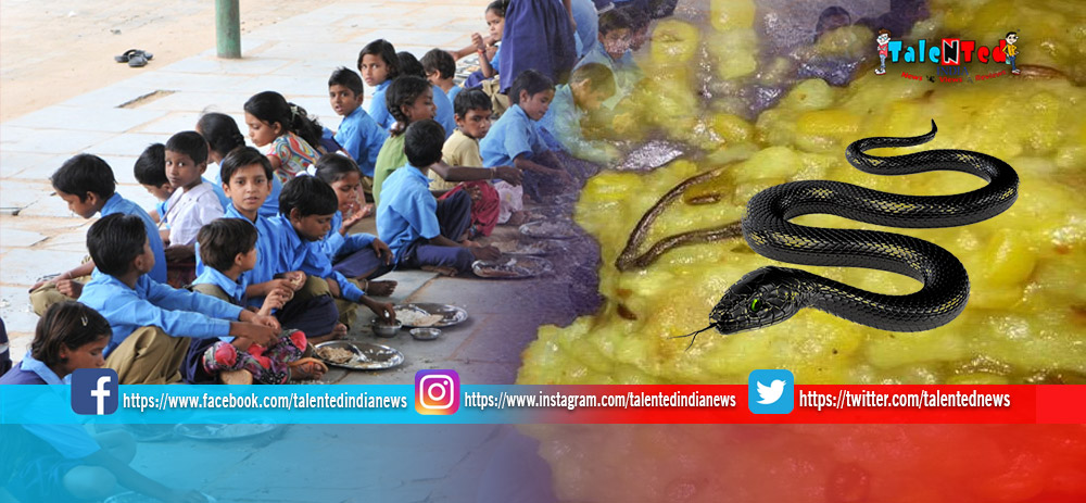 Snake Found In Mid Day Meal At Maharashtra | Government Primary School