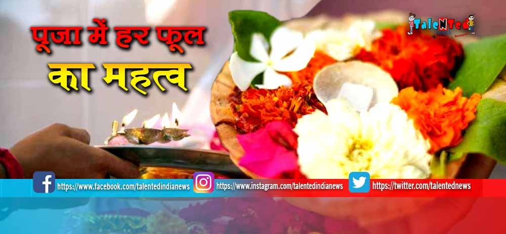 Importance Of Flower In Worship   Importance of Flowers in Indian Culture