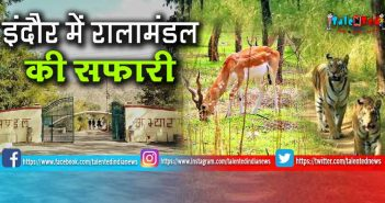 Ralamandal Wildlife Sanctuary | Best Places To Visit In Indore | Indore Tourism