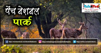Pench National Park | Places To Visit Near Pench National Park | Best Time To Visit