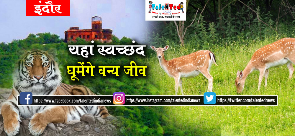 Ralamandal Wildlife Sanctuary Tourism | Best Places To Visit In Indore | Hotels