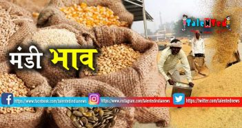 Mandi Bhav 17 May 2019 : Gehu, Chana, Soyabean, Cotton Price In India