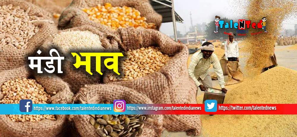 Mandi Bhav 25 May 2019 : Gehu Price, Chana Bhav, Cotton Price