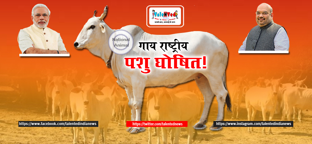 Cow Will Be Declared National Animal | List Of National Animals Of India