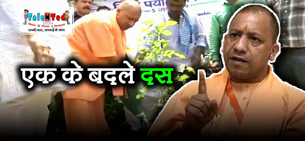 UP Govt Eases Norms For Felling Of Trees