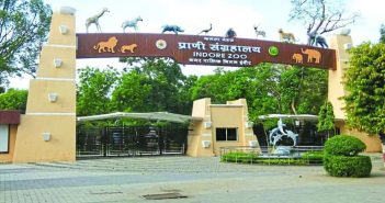 Heavy Crowd Was Seen In Indore Zoo On 1 January 2020