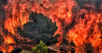 Australia Wildfires | Important Fact You Need To Know